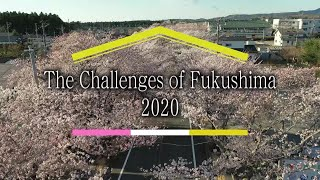 The Challenges of Fukushima 2020