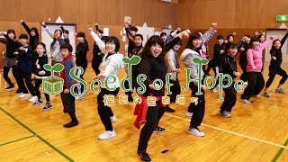 Seeds of Hope; An instructor of the modern-day version of kumi odori, Minami Chinen